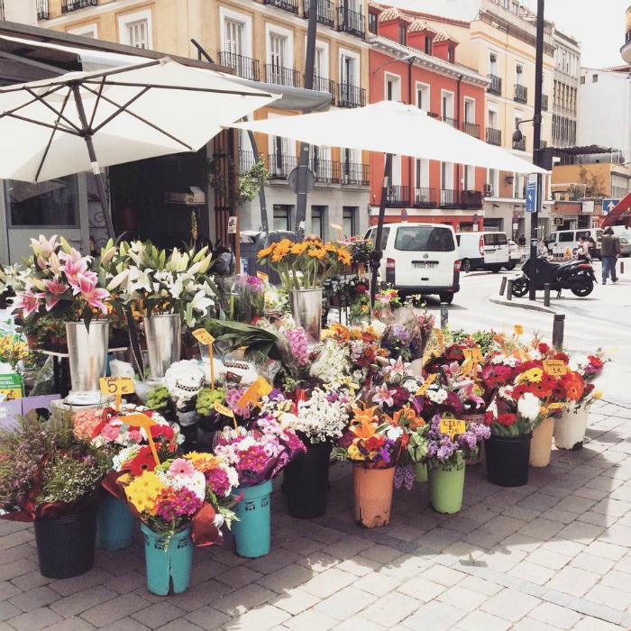 madrid blog 8